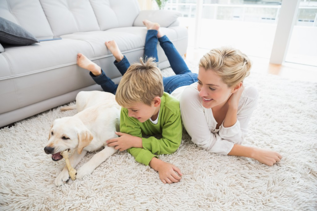 Helpful Tips For Keeping Your Carpet And Rugs Clean Chem
